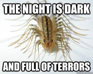 House Centipede Meme