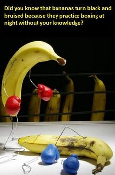 Boxing Bananas