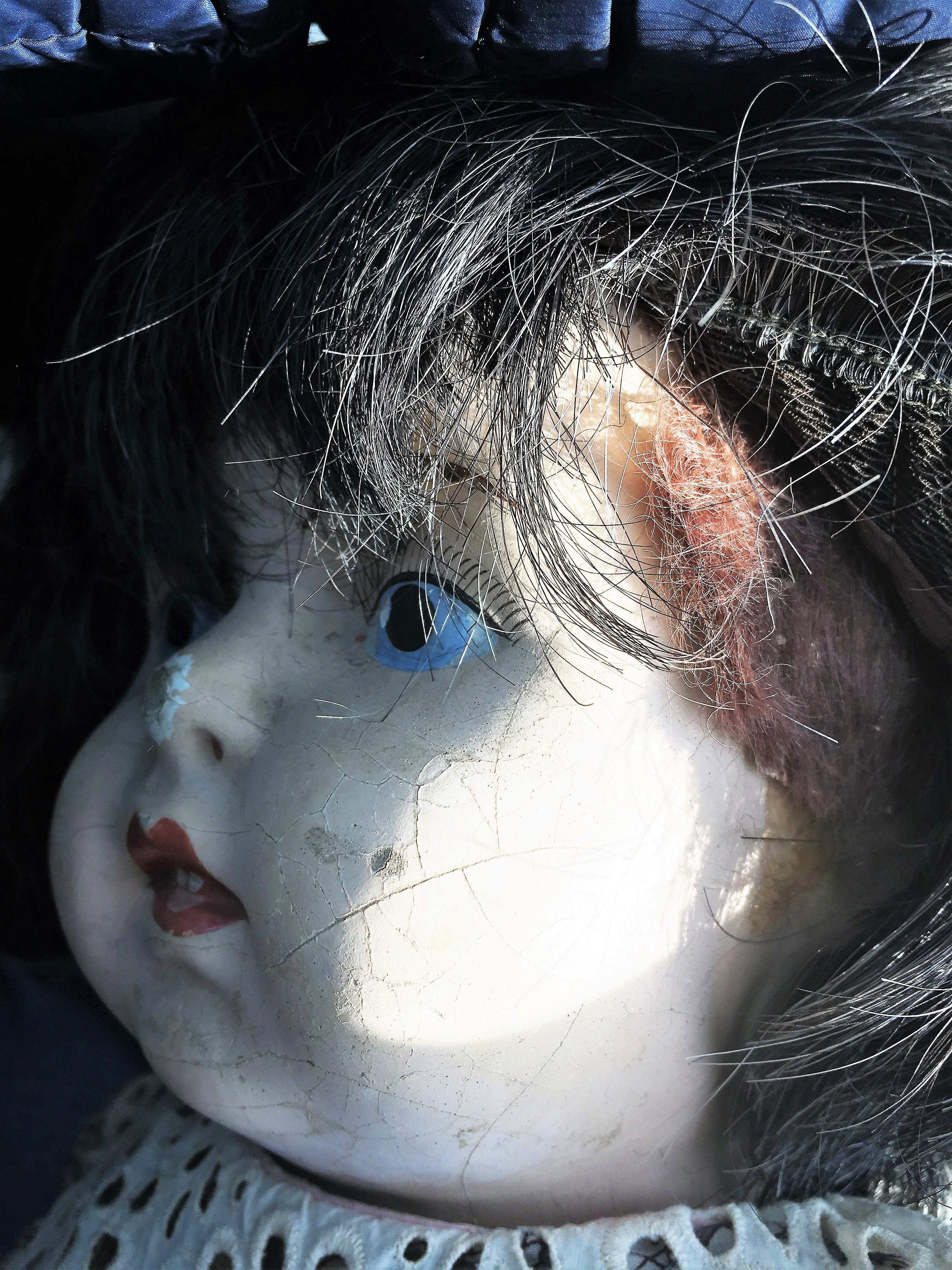 Doll Profile